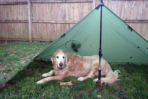 Jake under the Poncho Tarp set as a tarp & 916 - GoLite Poncho Tarp - Metro to Mountain Journal